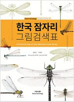 한국 잠자리 그림검색표
