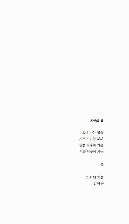 슬픔치약 거울크림 : 김혜순 시집