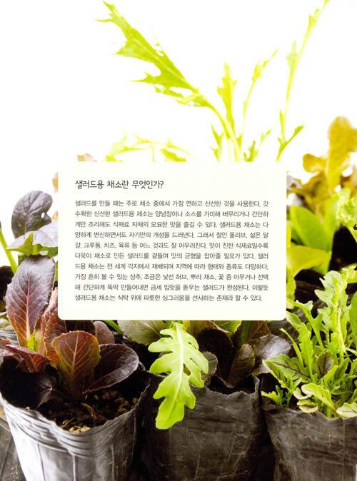 도시 농부의 샐러드 : 텃밭에서 수확해 손쉽게 만드는 샐러드