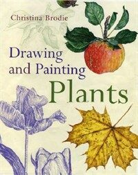 Drawing and Painting Plants (Paperback)