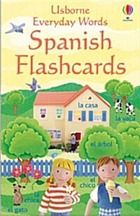 Everyday Word Flashcards In Spanish (Novelty Book)