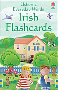 Everyday Words : Irish Flashcards (Novelty Book, New ed)