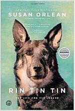 [중고] Rin Tin Tin (Paperback)