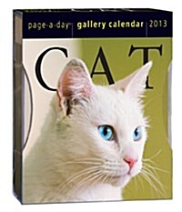 Cat Gallery 2013 Calendar (Disk, Page-A-Day )