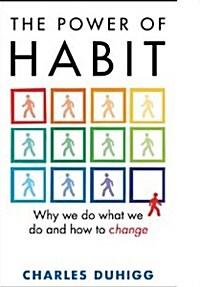 The Power of Habit (Paperback)