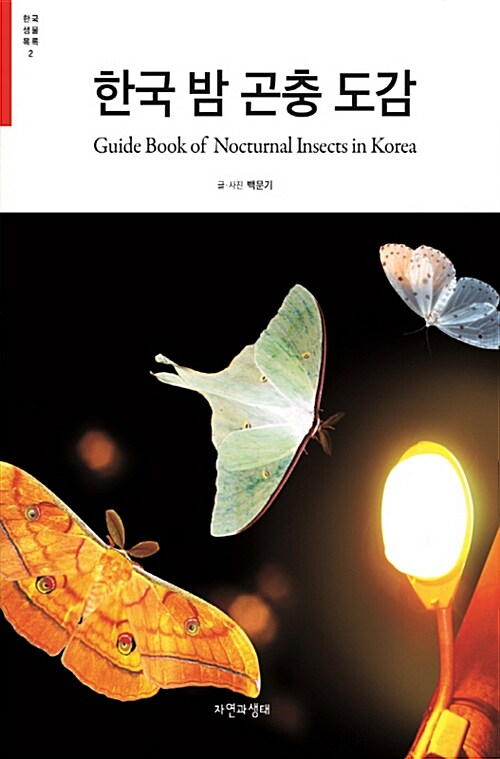 한국 밤 곤충 도감