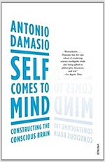 Self Comes to Mind : Constructing the Conscious Brain (Paperback)