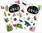 봄.여름.가을.겨울 식물도감 + 곤충도감 세트 - 전2권