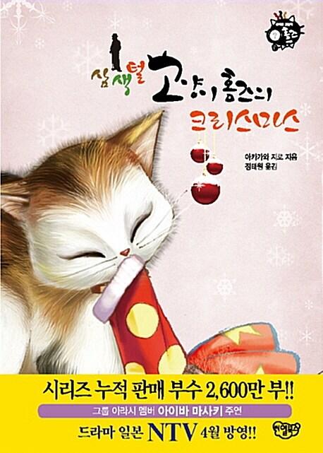 삼색털 고양이 홈즈의 크리스마스