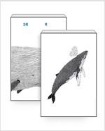 [세트] 고래 책 + 혹등고래 포스터 (지관통 포장)