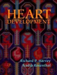 Heart development [electronic resource]