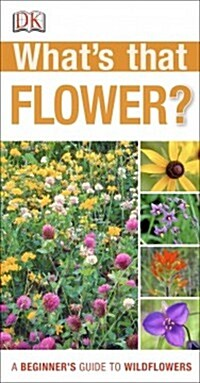 Whats That Flower?: A Beginners Guide to Wildflowers (Paperback)