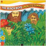 [중고] The Beach Boys - Endless Summer [MQA-UHQ CD Limited Edition]