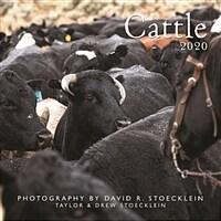 Cattle 2020 Calendar (Calendar, Wall)