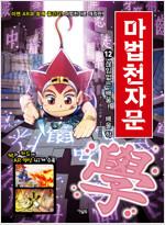 마법천자문 12 개정판