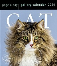Cat Page-A-Day Gallery Calendar 2020 (Daily)