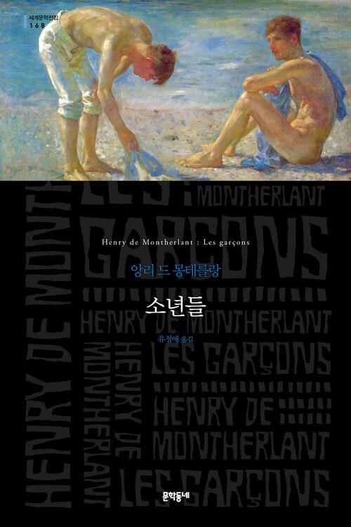 소년들 - 세계문학전집 168