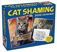 Cat Shaming 2020 Day-To-Day Calendar (Daily)