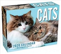 Cats 2020 Mini Day-To-Day Calendar (Daily)