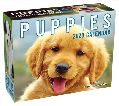 Puppies 2020 Mini Day-To-Day Calendar (Daily)