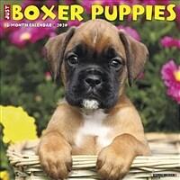 Just Boxer Puppies 2020 Wall Calendar (Dog Breed Calendar) (Wall)