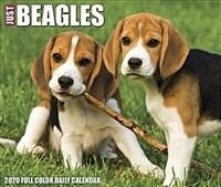 Just Beagles 2020 Box Calendar (Dog Breed Calendar) (Daily)