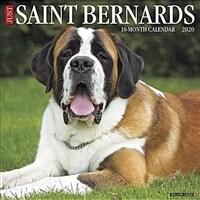Just Saint Bernards 2020 Wall Calendar (Dog Breed Calendar) (Wall)