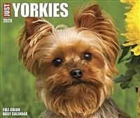 Just Yorkies 2020 Box Calendar (Dog Breed Calendar) (Daily)