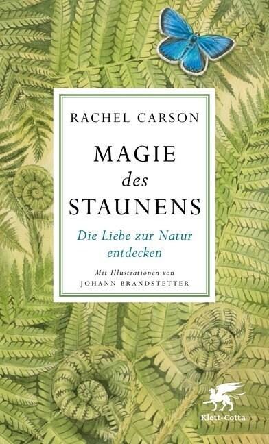 Magie des Staunens (Hardcover)