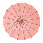 알라딘 2겹 장우산