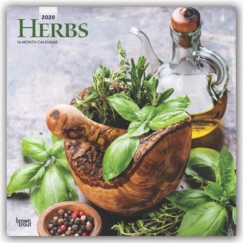 [중고] Herbs 2020 Square (Other)