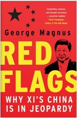 Red Flags: Why XI's China Is in Jeopardy (Paperback)