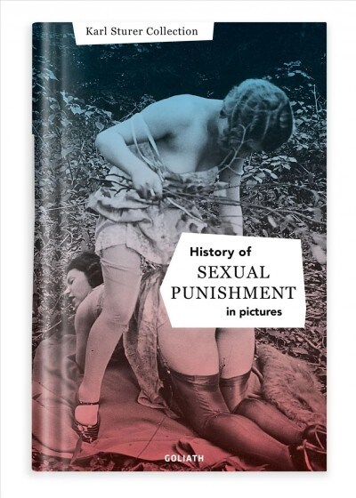 History of Sexual Punishment (Paperback)