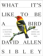 What It's Like to Be a Bird: From Flying to Nesting, Eating to Singing--What Birds Are Doing, and Why (Hardcover)