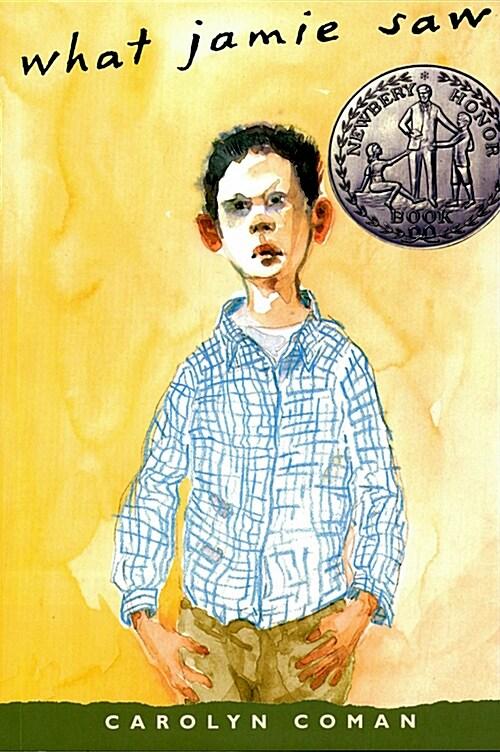 What Jamie Saw (Paperback, Reissue)
