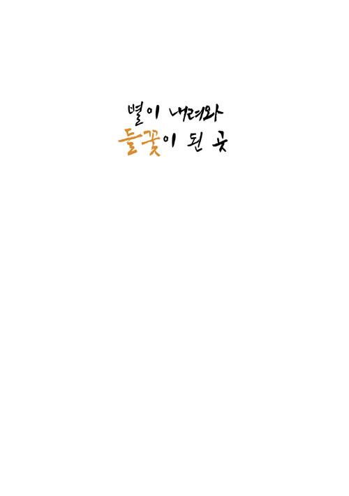 별이 내려와 들꽃이 된 곳 : 박일문 포토 산문집
