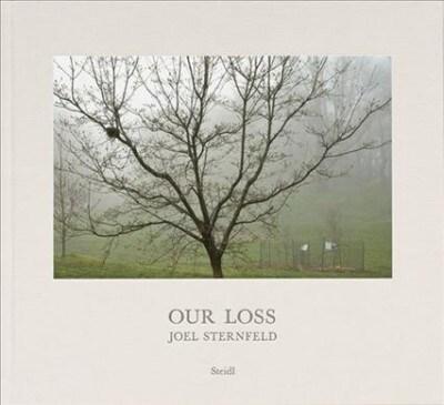 Joel Sternfeld: Our Loss (Hardcover)