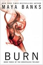 [중고] Burn (Paperback)