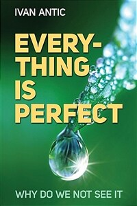 Everything is perfect: Why Do We Not See It (Paperback)