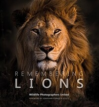 Remembering Lions (Hardcover)