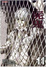 [고화질] 시귀 11 (완결)