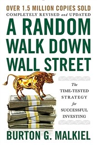 A Random Walk Down Wall Street: The Time-Tested Strategy for Successful Investing (Paperback, 12)