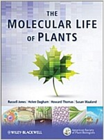 The Molecular Life of Plants (Paperback)