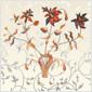 [중고] 이소라 - 정규 4집 꽃 [180g 화이트컬러 LP][Gatefold Cover]