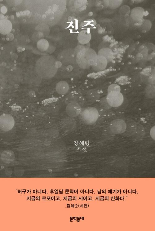 진주 : 장혜령 소설