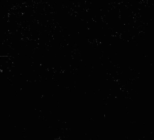 Ellegarden - Best : 1999~2008 [재발매]