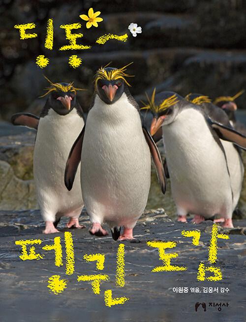 딩동~ 펭귄 도감