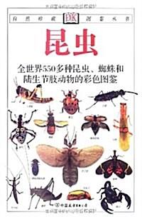 經典圖鑒珍藏:《昆蟲》(彩色)(新) (第2版, 平裝)