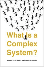 What Is a Complex System? (Paperback)