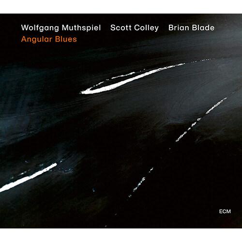 [수입] Wolfgang Muthspiel - Angular Blues